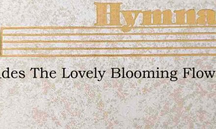 As Fades The Lovely Blooming Flower – Hymn Lyrics