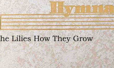See The Lilies How They Grow – Hymn Lyrics