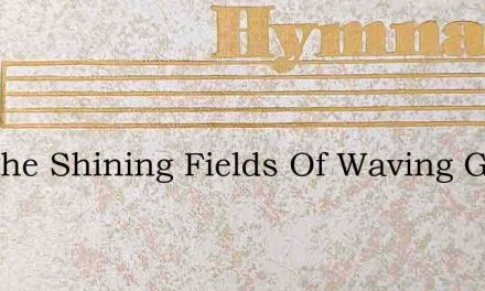See The Shining Fields Of Waving Grain – Hymn Lyrics