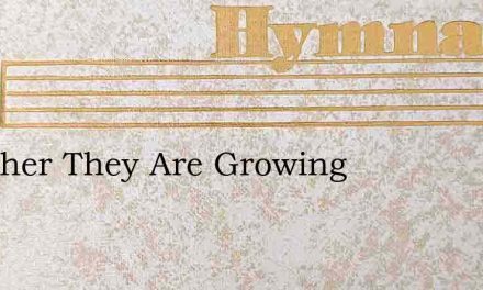 Together They Are Growing – Hymn Lyrics