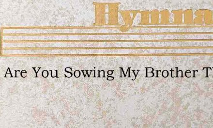 What Are You Sowing My Brother The Bitt – Hymn Lyrics