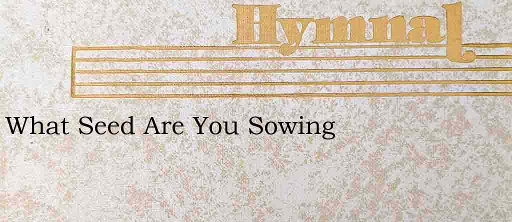 What Seed Are You Sowing – Hymn Lyrics