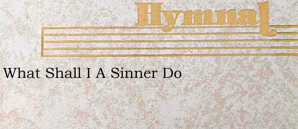 What Shall I A Sinner Do – Hymn Lyrics