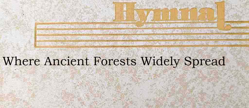 Where Ancient Forests Widely Spread – Hymn Lyrics