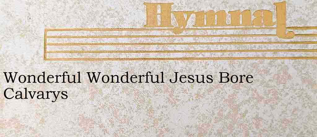 Wonderful Wonderful Jesus Bore Calvarys – Hymn Lyrics
